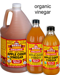 Best home remedies for fleas fleaseason fleaseason bragg organic apple cider vinegar kill fleas with bragg all natural organic vinegar ccuart Choice Image