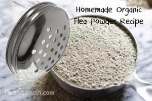 3 Ingredient Homemade Organic Flea Powder Recipe