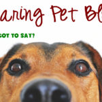 Pet Blog – Start Here