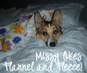 Missy is a Welsh Corgi and I'm sharing my first flea story
