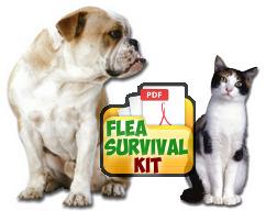 Flea Survival Kit