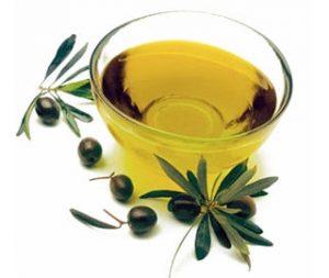 Tea Tree Oil as a shampoo for Fleas