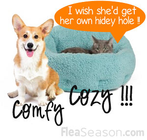 OrthoComfort Deep Dish Cuddler pet bed for cats and dogs