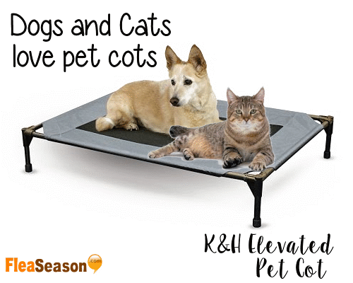 K&H elevated pet cot bed Dogs and Cats love them.
