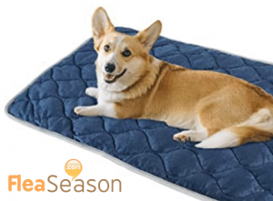 Self heating thermal pet pad to keep dogs and cats warm and cozy.