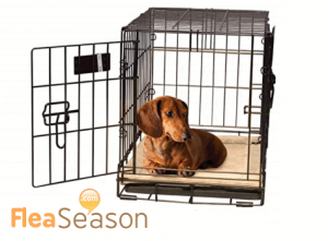 Self-heating dog pads can be placed inside a dog crate.